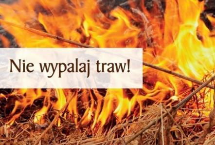 Za wypalanie traw grożą surowe kary!